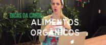 Alimentos orgânicos valem a pena? – carol borghesi