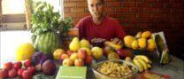 Dieta de frutas frugivorismo frutarianismo crudivorismo vegano